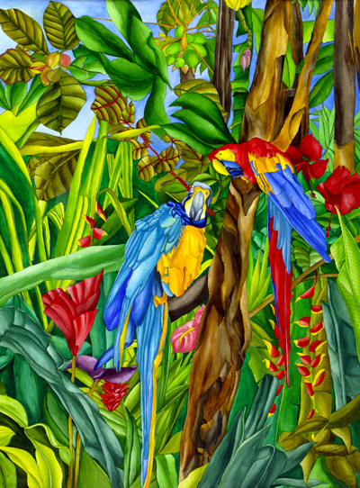 Rainforest Rituals - Macaws among Hibiscus, Ginger, Heliconias,